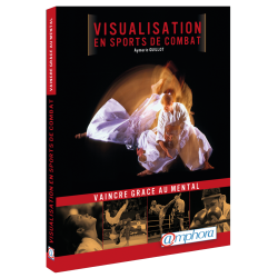 Visualisation en sports de combat
